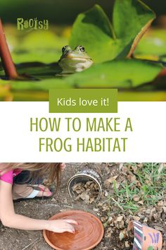 Your kids will love learning how to make this DIY toad and frog house in the garden! Garden Projects, Garden Ideas, Diy Projects, Cold Climate Gardening, Frog Habitat, Frog House, Hydrangea Care, Garden Party Decorations, Good Environment