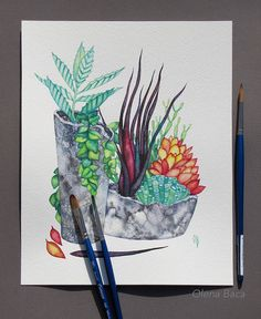 Succulent wall art. A watercolor painting by Olena Baca.