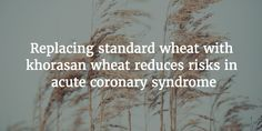 #Khorasan Wheat-Based Diet and Acute #Coronary Syndrome http://snip.ly/Xb3g via NatMed Journal
