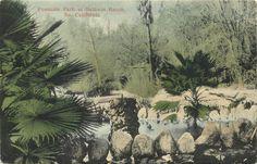 c1907 Postcard; Fountain Park at Baldwin Ranch Arcadia California