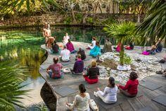 Música en vivo Disfruta de canciones populares en la hermosa área de la Ceiba Sagrada