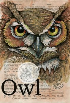 Owl Mixed Media Drawing on Distressed, Dictionary Page - available for purchase at www.etsy.com/shop/flyingshoes - flying shoes art studio