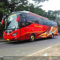 80 Best Bus Paints Images In 2020 Bus Luxury Bus Bus Coach