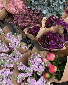 French Flowers, May Flowers, Little Flowers, Flowers Nature, Beautiful Flowers, Bloom Baby, Plants Are Friends, Flower Aesthetic, Outdoor Plants