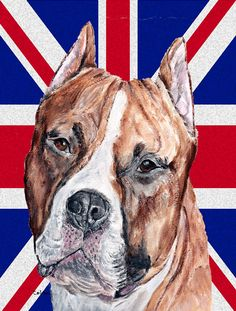 Staffordshire Bull Terrier Staffie with English Union Jack British Flag House Product Name Flat Coated Retriever House Vertical Flag Flag