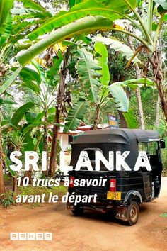 Préparer son voyage au Sri Lanka - Best Places to Get Immersed in Another Culture Sri Lanka Negombo, Voyage Sri Lanka, Adam's Peak Sri Lanka, Pray For Sri Lanka, Sri Lanka Honeymoon, Ella Sri Lanka, Sri Lanka Holidays, Arugam Bay, Man Of The House