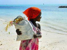 Seaweed Collector, Zanzibar by Rod Waddington