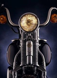 Harley-Davidson Museum Shop - FXSTS Springer Softail 0402-1120 : Posters and Framed Art Prints Available