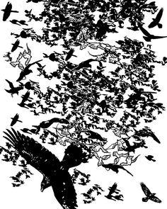 a murder of ravens
