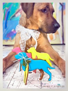 Oscar Ate My Muffin shows us how to make custom cookie cutters and create gingerbread Ridgebacks! Easy Dog Treat Recipes, Homemade Dog Treats, Pet Treats, Dog Cat, 3d Dog, Super Cute Dogs, Cat Cookies, Dogs And Puppies, Doggies