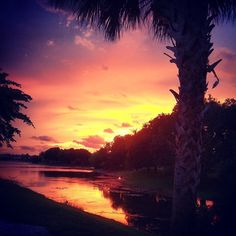 Sunset in Florida, priceless  No lying with that statement