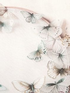 Butterfly Tea Cottage ✿⊱╮