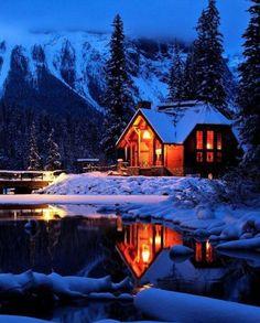 Decora le feste con un meraviglioso albero di Natale!  #Dalani #Natale #Baita #Neve