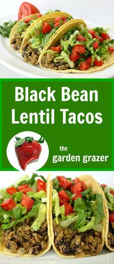 Lentils and black beans make an amazing, protein-packed taco mix! (vegan, gluten-free)