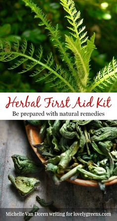 Read it Be prepared with natural remedies by Michelle Van Doren of Seeking Joyful Simplicity Making your own herbal first aid kit doesn't have to be…