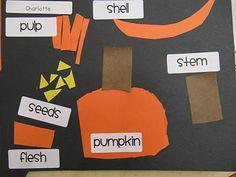 Parts of a Pumpkin Art Project