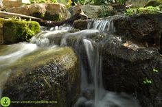 Close up of a waterfall at the Virginia Water Gardens shop (308 Cambridge Street Fredericksburg, VA 22405).