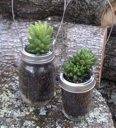 Mason Jar Succulent Planter