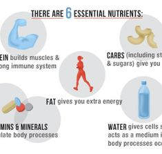 There are 6 essential nutrients in a healthy diet: protein, carbs, fat, vitamins, minerals, and water.