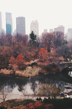 new york during fall <3