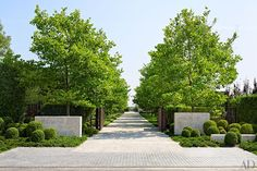 Tour a Stylish Hamptons Home with Beautiful Views of Sagg Pond : London plane trees shade the drive of a Bridgehampton, New York, residence created by the architecture, interiors, and landscape firm Sawyer Modern Landscape Design, Landscape Plans, Contemporary Landscape, Landscape Borders, Modern Contemporary, Modern Design, Driveway Landscaping, Modern Landscaping, Landscaping Rocks