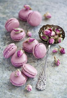Lavender macarons, pretty, just wish I enjoyed these as much as they are popular. Macarons just don't pack a dessert punch. Lavender Macarons, Pink Macaroons, French Macaroons, Lavender Honey, Drying Lavender, Edible Lavender, Lavender Cake, Lavender Cottage, Cupcakes