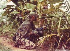 LRRP in Vietnam