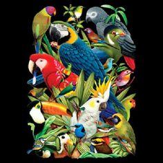 TSHIRT   Avian World Parrot Exotic Bird T  by AlwaysInStitchesCo, $14.00