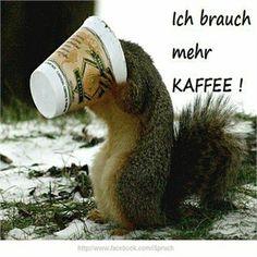 Guten Morgen - http://guten-morgen-bilder.1pic4u.com/2014/11/05/guten-morgen-55/