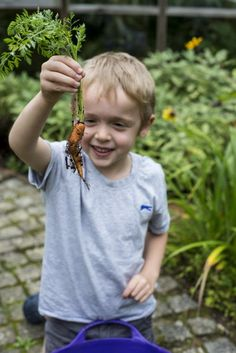 52 messy, educational, fun projects in 'The Children's Garden'