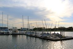 Waterfront view at USFSP