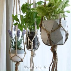DIY-Macrame-Pflanzenaufhänger - Diy Heimwerken Dekoration - Wohnaccessoires DIY Macrame Plant Hanger DIY DIY Decoración And Home Improvement Home Crafts, Diy Home Decor, Diy And Crafts, Jar Crafts, Recycled Crafts, Room Decor, Diy Macrame Plant Hanger, Plant Hangers, Diy Hanging Planter Macrame