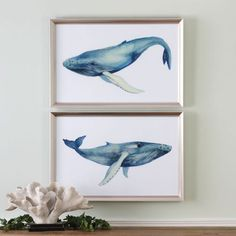 The Whale's Song Prints - am so crazy about these!