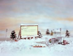lori nix - you must check out this artist! She makes dioramas, then photographs them. They are amazing!
