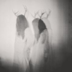 Witchcraft, in its purest form, is an art only understood by the Old Souls. Shadow Play, Oh Deer, Dark Places, Macabre, Antlers, Dark Art, Art Photography, Conceptual Photography, Beast