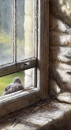 All images are the original artwork of nature artist and wildlife artist Dr. Jeremy Paul and are protected by international copyright laws. Looking Out The Window, Open Window, Window View, Through The Window, Wildlife Art, Bird Art, Beautiful Birds, Painting Inspiration, Pet Birds