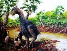 Meet the giant, flightless bird that once roamed Arctic swamps - The Washington Post