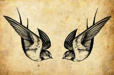 Awesome Tattoo Pics: The swallow is a bird that chooses a mate for life and will only nest with that bird and no other. Therefore a swallow tattoo is also a symbol for everlasting love and loyalty to the family. Swallow pairs travel long distances, only to find their way back to each other at home.