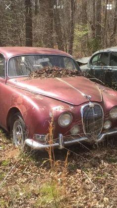 James' 1966 Jaguar 3.8S - AutoShrine Registry