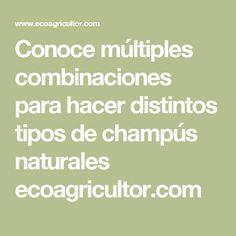 Conoce múltiples combinaciones para hacer distintos tipos de champús naturales ecoagricultor.com