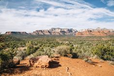 Travel Tuesday: Around, and Above, Sedona | Free People Blog #freepeople