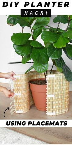Transform Your Ugly Planters With This 10 Minute Hack! Transform Your Ugly Planters With This 10 Minute Hack! House Plants Decor, Plant Decor, Diy Crafts To Sell, Home Crafts, Thrift Store Crafts, Indoor Garden, Indoor Plants, Plantas Indoor, Pot Jardin