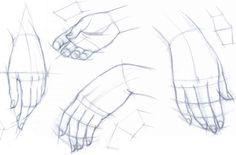 The Hands Dimensions - Drawing the Human Body - Joshua Nava Arts