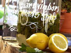 Saft på svartvinbärsblad  1 l vatten 1 kg socker 1 pkt citronsyra 2 st citroner, skivad 1 l vinbärsblad   1. Börja med att skiva citroner i ca ½ cm skivor.  2. Varva den skivade citronen med vinbärsbladen i en stor och väl rengjord glasburk eller tillbringare.  3. Ta en stor kastrull, häll i vattnet, sockret och citronsyran.  4. Koka upp under omrörning tills allt smält ihop.  5. Häll sedan över vattenblandningen i glasburken. Detta ska stå i ett svalt utrymme i 5 dagar.