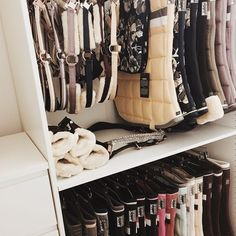 Why do you think is it essential to consider the proper suggestions in acquiring the equestrian boots to be utilized with or without any horseback riding competitors? Horse Tack Rooms, Horse Stables, Horse Barns, Equestrian Outfits, Equestrian Style, Tack Room Organization, English Horse Tack, Horse Fashion, Horse Gear