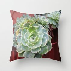 Succulents in Vancouver  Throw Pillow by Shana's Shop - $20.00