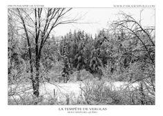 Tempête de verglas Monochrome, Snow, Outdoor, Outdoors, Monochrome Painting, Outdoor Games, Outdoor Living, Eyes