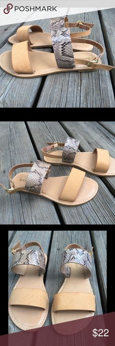 New in box Bamboo snake skin buckle sandals size 6 Only pair I have left size 6 or 36 ...man made material Bamboo Shoes Sandals