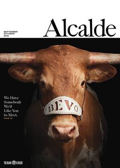 Bevo XV attended his first football game on September 2016 to meet a sell out crowd. We beat Notre Dame Way to start year 3 for Coach Strong. Big 12 Football, First Football Game, College Football, Orange And Purple, Purple Gold, Burnt Orange, Yankee Doodle Dandy, Texas Longhorns Football, Hook Em Horns
