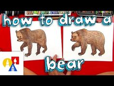 How To Draw A Grizzly Bear (realistic) - Art for Kids Hub Art For Kids Hub, Art Hub, Grizzly Bear Drawing, Directed Drawing, 4th Grade Art, Woodland Critters, Bear Illustration, Bear Wallpaper, Learn Art